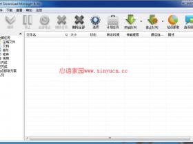 Internet Download Manager(idm下载器) v6.36.7破解中文版永不反弹窗口