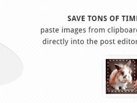 强大的Wordpress图片粘贴上传插件OnePress Image Elevator v2.62心语家园汉化版