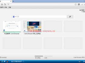 百分浏览器XP专用Cent Browser v1.8.9.28绿色直装增强版