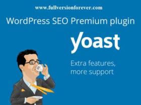 独家汉化WordPress搜索引擎优化插件 Yoast SEO Premium 中文高级版[更新至v16.0.2]