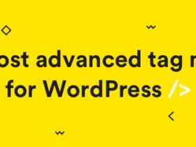 WordPress 关键词自动添加内链插件 Simple Tags 简单标签汉化版 【更新到 v3.3.1】