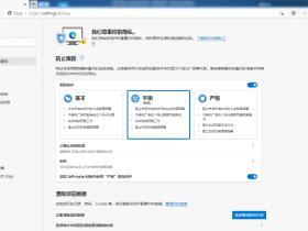 Microsoft Edge Canary金丝雀增强版 v89.0.765.0 便捷绿色优化安装版