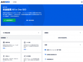 独家汉化强大的多合一SEO集合插件 All in One SEO Pack Pro 更新至4.0.17