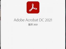 Adobe Acrobat Pro DC v2021.001.20150 中文直装破解版 (附 一键转曲 一键转蓝 教程)