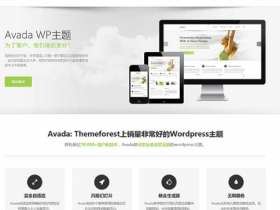 Wordpress多用途企业主题 Avada Theme 中文汉化授权版【更新至 v7.4.1】