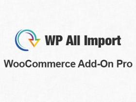 WordPress XML和CSV导入插件WP All Import Pro汉化版【更新到V4.7.0.1.4】带附加组件